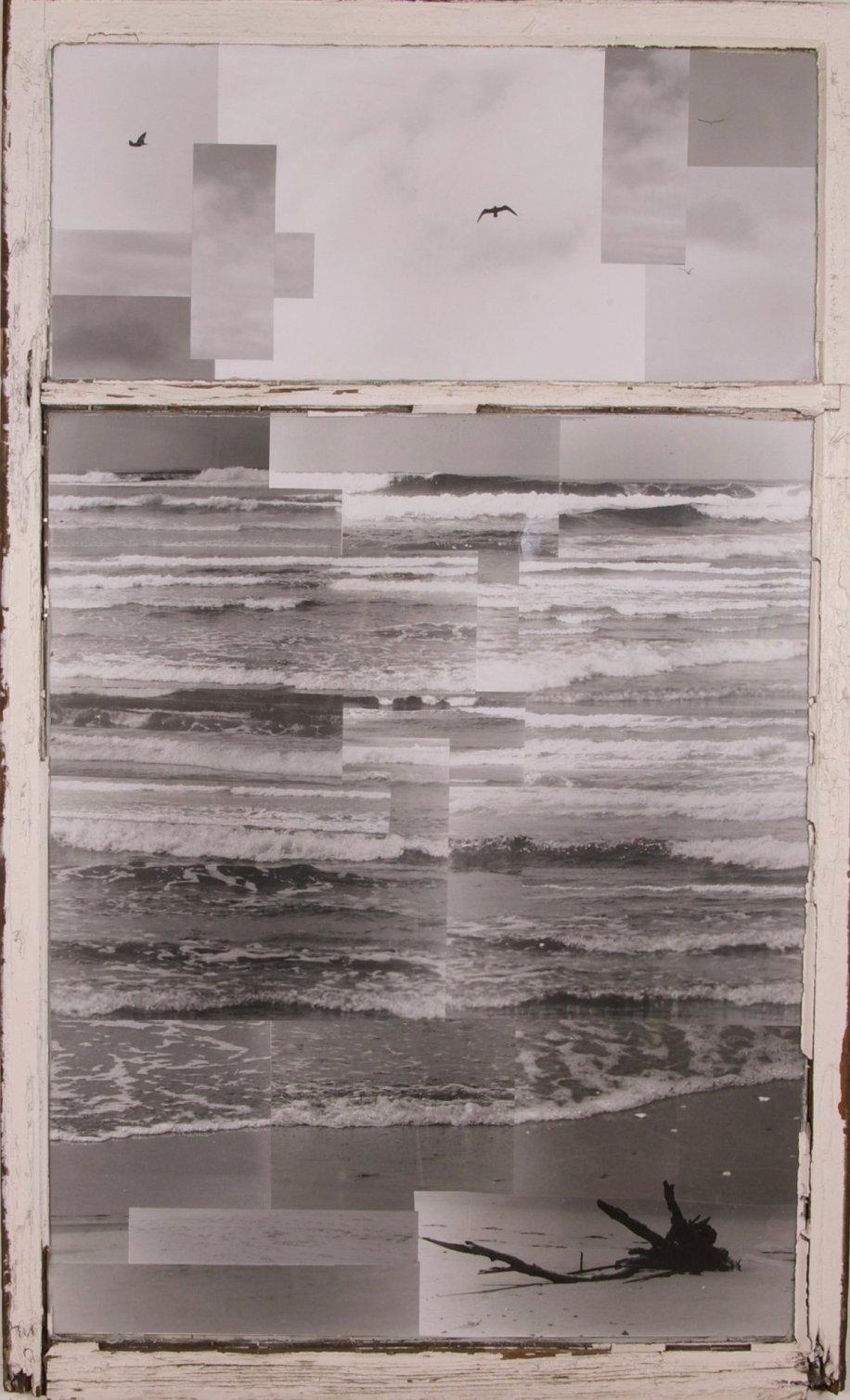 Johnathan Livingston Seagull 4 ft x 6 ft SOLD
