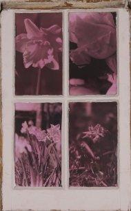 Techna Floral (1)