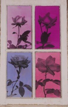 Techna Floral (10)