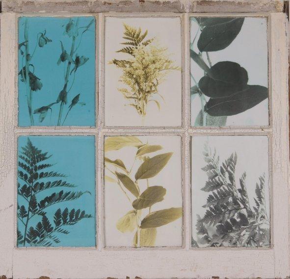 Techna Floral (4)